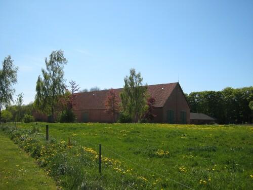 Pig Farming in Denmark - Danish Exports